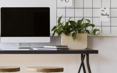 Louer des bureaux vides : un concept venu des Pays-Bas